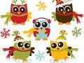 Copy4-1352138885-clipart-christmas-owls-dc-8419