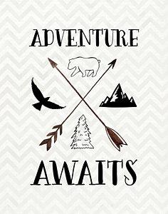 Adventure-awaits-tara-moss
